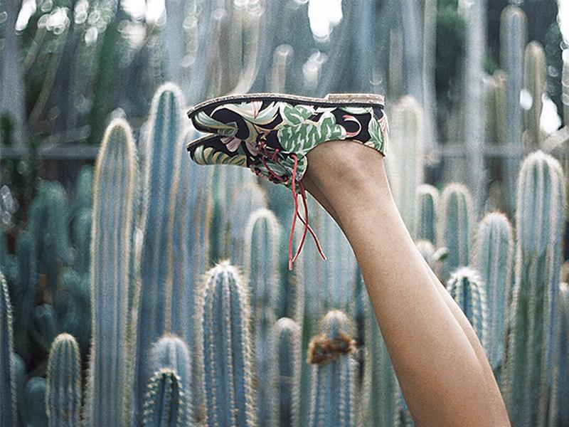 sapatos ecológicos insecta shoes destaque