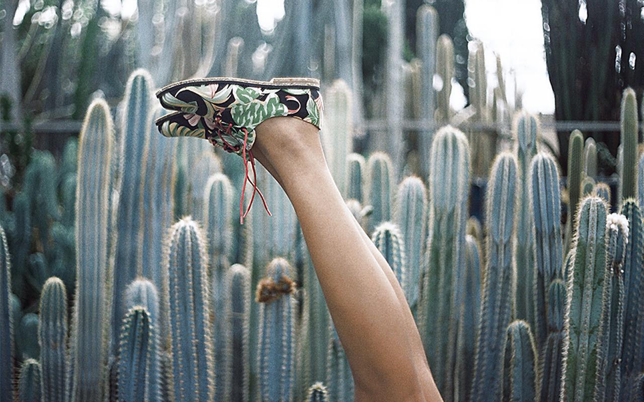 Sapatos da Insecta são ecológicos e veganos