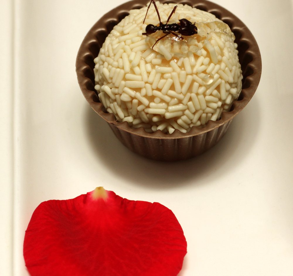 Brigadeiro de jambú com formiga saúva