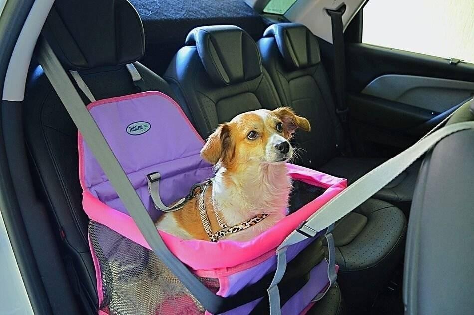 assento para carro_pet_penteadeira amarela3